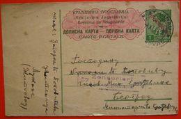 WW2 GERMAN OCCUPATION OF SERBIA - Censured Postal Stationery Sent From Zitkovac To Beograd Petar II 1din YU10/112 - Serbia