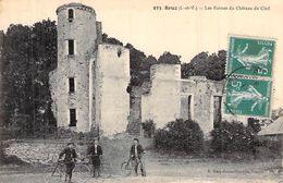 C P A35] Ille Et Vilaine >  BRUZ LES RUINES DU CHATEAU  CARTE ANIMEE BRETAGNE - Andere Gemeenten