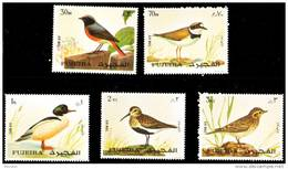 Fujeira  -MNH - OIseaux - Birds- Air Mail - Arabie Saoudite