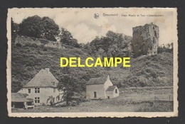 """DF / BELGIQUE / PROVINCE DE HAINAUT / BEAUMONT / VIEUX MOULIN ET TOUR """"SALAMANDRE"""" - Beaumont"""