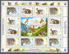 Neh198MSc WWF FAUNA ZOOGDIEREN WILDE KAT VOGELS ADELAARS EAGLES BIRDS PALLAS'S CAT MAMMALS TAJIKISTAN 1996 PF/MNH # - W.W.F.