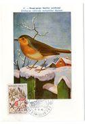 OISEAU / ROUGE-GORGE = MONACO 1962  N° 582  = CARTE MAXIMUM INSTITUT ROYAL De BELGIQUE - Sperlingsvögel & Singvögel