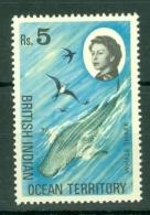 British Indian Territory (BIOT): 1968/70   QE II - Marine Life   SG29    5R   MH - British Indian Ocean Territory (BIOT)