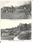 2 X CPA / AK / PK   - MONT-DE-L'ENCLUS   Quelques Villas  + Promenades Vers L'Horlitain - Kluisbergen