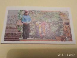 5 Riels 1993-99 - Cambogia
