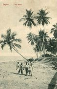 ASIA Asie - SRI LANKA ( Ceylon Ex CEYLAN ) - The Sea Shore - Sri Lanka (Ceilán)