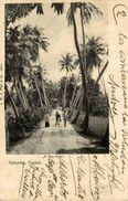 1903  ASIE Asia - SRI LANKA ( Ceylon Ex CEYLAN )COLOMBO : A Bye Path - Sri Lanka (Ceylon)