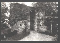 Salmchateau S/Salm - Entrée Du Château Fort Des Comtes De Salm - Photo Véritable - Vielsalm
