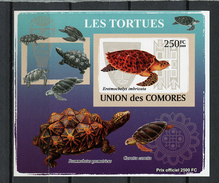 2009 -  ISOLE COMORES - Mi. Nr.  2158 - NH -  (UP.70.30) - Isole Comore (1975-...)