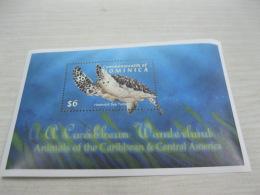 Dominica Fish Marine Life Turtles - Dominica (1978-...)