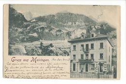 18972 - Gruss Aus Meiringen Hotel Lowen - BE Berne