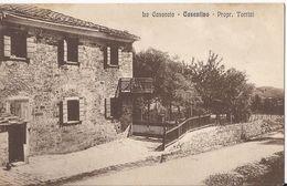 La Casaccia (2) - Casentino - Arezzo - HP206 - Arezzo