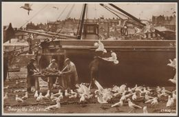 Seagulls, St Ives, Cornwall, C.1930s - Roach RP Postcard - St.Ives