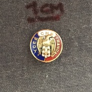 Badge (Pin) ZN006256 - CHS Lycée Français (Lycee Francais) France Highschool Health And Safety Committee - Associations