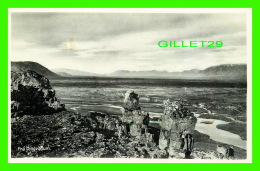 ICELAND - FRA PINGVOLLUM - MEO EINKARÉTTI, HELGI ARNASON - - Iceland