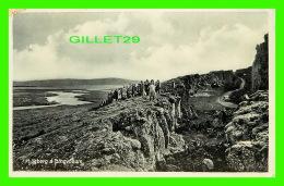 ICELAND - LOGBERG A PINGVOLLUM - MEO EINKARÉTTI, HELGI ARNASON - ANIMATED WITH PEOPLES - - Islande