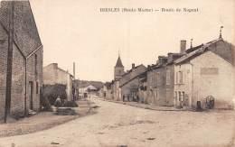 52 - HAUTE MARNE / Biesles - 52973 - Route De Nogent - Autres Communes