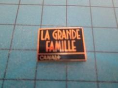 Pin510a Pin's Pins / Beau Et Rare : CHAINE DE TELE CANAL + EMISSION LA GRANDE FAMILLE - Photography