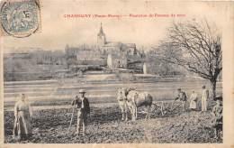 52 - HAUTE MARNE / 521169 - Chassigny - Plantation De Pommes De Terre - Beau Cliché Animé - Autres Communes