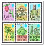 Britse Maagdeneilanden 1979, Postfris MNH, Cacti - Britse Maagdeneilanden