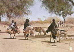 BURKINA FASO - EN PAYS LIPTAKO - Femmes Bella Sur Le Chemin Du Marché.........................ANE - Burkina Faso