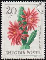 HUNGARY - Scott #1706 Epiphyllum Sp. / Used Stamp - Hungary