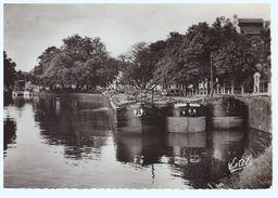 LILLE Le Canal Péniche Batellerie Volubiles - Le Quesnoy