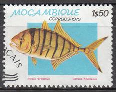 MOZAMBIQUE    SCOTT NO  643    USED       YEAR   1979 - Mozambique