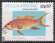 MOZAMBIQUE    SCOTT NO  647      USED       YEAR   1979 - Mozambique