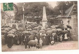 CPA 89 MALIGNY INAUGURATION DU MONUMENT 1907 RARE BELLE CARTE !! - Autres Communes