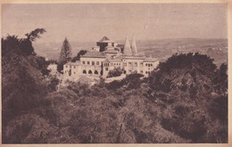 SINTRA PALACIO NACIONAL, PORTUGAL.TBE-BLEUP - Lisboa