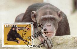 Eritrea 2001 Souvenir Sheet Chimpanzee, Scouting Emblem Cancelled - Chimpanzees
