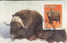 Eritrea 2001 Souvenir Sheet Water Buffalo, Rotary Emblem Cancelled - Game