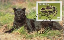 Eritrea 2001 Souvenir Sheet Frog, Scouting Emblem Cancelled - Frogs