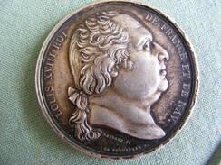 Jeton ARGENT LOUIS XVIII ROI DE FRANCE ET DE NAV. VIVE LE ROI 1821 - Andere Sammlungen