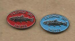 Sport Fishing Society - Zagreb.Croatia.2 Pins Fish - Badges