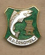 Sport Fishing Society - Crnomelj. Slovenia. Coat Of Arms. Fish - Badges