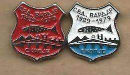 Sport Fishing Society - Vardar Skopje Macedonia.2 Pins Fish - Badges
