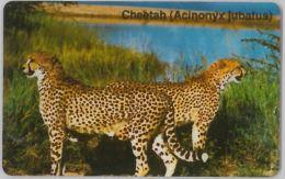 PHONE CARD NAMIBIA (E8.15.3 - Namibia