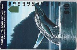 PHONE CARD NORFOLK (E8.17.6 - Norfolk Island