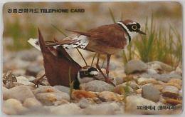 PHONE CARD COREA SUD (E11.25.2 - Korea, South