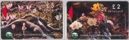 LOT 2 PHONE CARD CIPRO (E11.26.7 - Cyprus