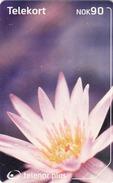 NORWAY - Kvit Blomst Flower N241, 04/02, Tirage 40.000, Used - Norway