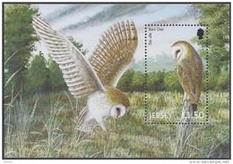Jersey 2001 Yvertn° Bloc 37 *** MNH Cote 8 Euro Faune Oiseaux Vogels Birds - Jersey