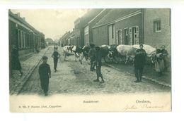 Oorderen - Hoelen Nr 701 - Zandstraat - Antwerpen