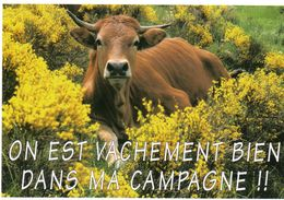 CPM - D - VACHE - ON EST VACHEMENT BIEN DANS MA COMPAGNE !!! - Cows