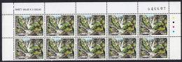 E0278 ZAMBIA 1993, SG 717 Waterfalls K50  Marginal Block Of 10 With Traffic Lights,  MNH - Zambia (1965-...)