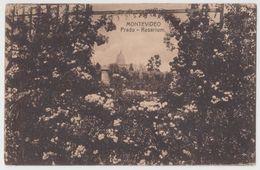 URUGUAY Montevideo Prado Rosarium PC CPA 1917 - Uruguay