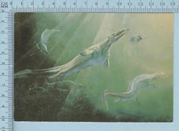 Dinosaure - Dinauraure - Lézard Marin Platecarpus Et Poisson Protoshiraena  -  Carte Postale Postcard - Animaux & Faune