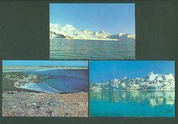 Lot 6 Postcards Falkland South Georgia Islands South Atlantic Antarctica - Falkland Islands